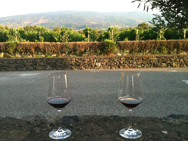 Take a luxury break from the hot summer: Sicily winery tour