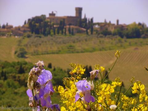 Castello di Poppiano-Montespertoli