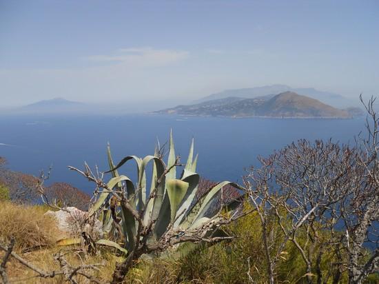 Capri - Blick auf den Golf von Neapel