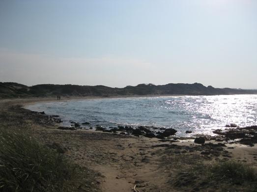 La riserva naturale di Torre Guaceto