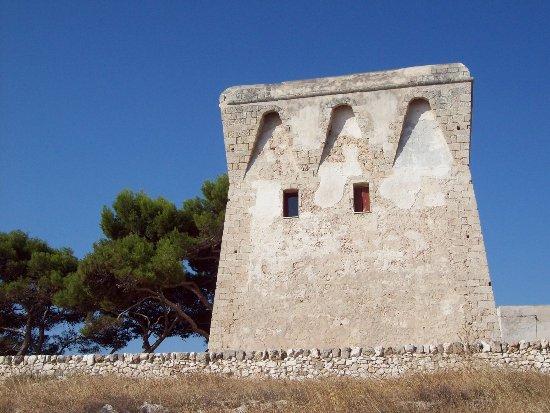 Coastal Watchtowers - Torre Incina, Polignano a Mare
