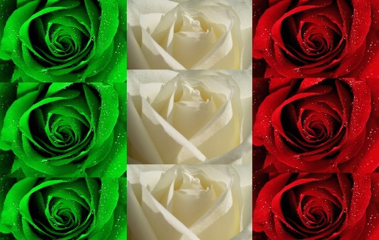 What Else - The best blogs, posts of the week about Italy