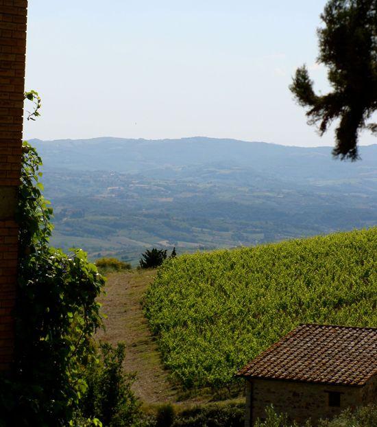 Farmhouse Chianti, Tuscany