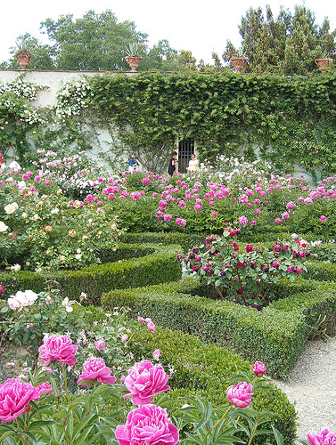 top 5 rose gardens in italy - Pictures Of Rose Gardens