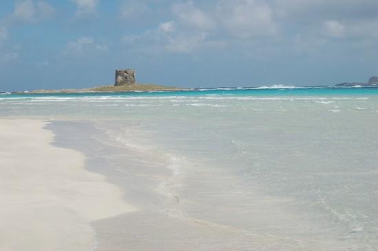 Best beaches in Sardinia: La Pelosa Beach